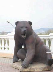 Медведи в Красноярске по улицам не ходят, они там сидят